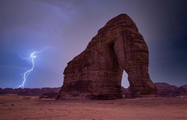 Winning photo for Nature - Mr. Mosallam AlBluwe