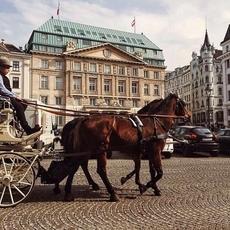 رحلة ملوكيّة تجتمع فيها الأصالة بالمغامرة في فيينا