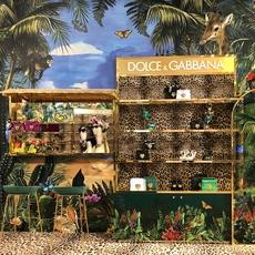 Dolce & Gabbana تحطّ رحالها في Dubai Mall