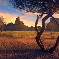 تنفّسي روح السعوديّة في سياحة داخليّة لا تشبه سواها
