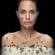 النّحل يغطّي Angelina Jolie... فما السبب؟!